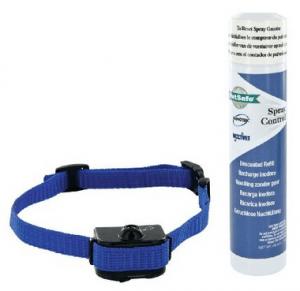 collier anti aboiement petit chien spray