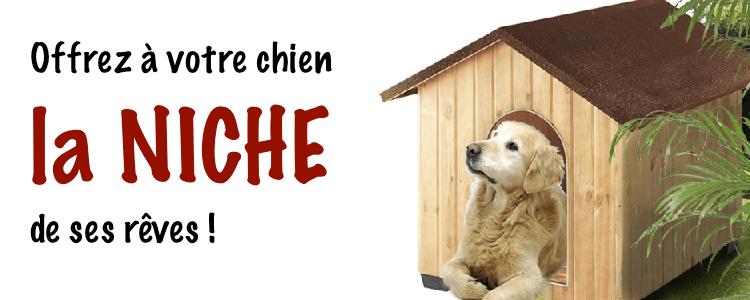Design ou acheter un tapis pas cher lille 2338 lille - Niche pour chien en palette ...