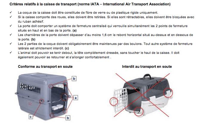 cage de transport pour chien norme IATA