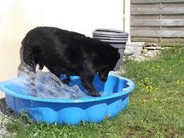 piscines en plastique
