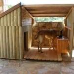 Niche pour chien en bois bien nature