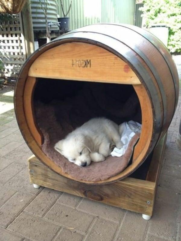 niche pour chien design tonneau