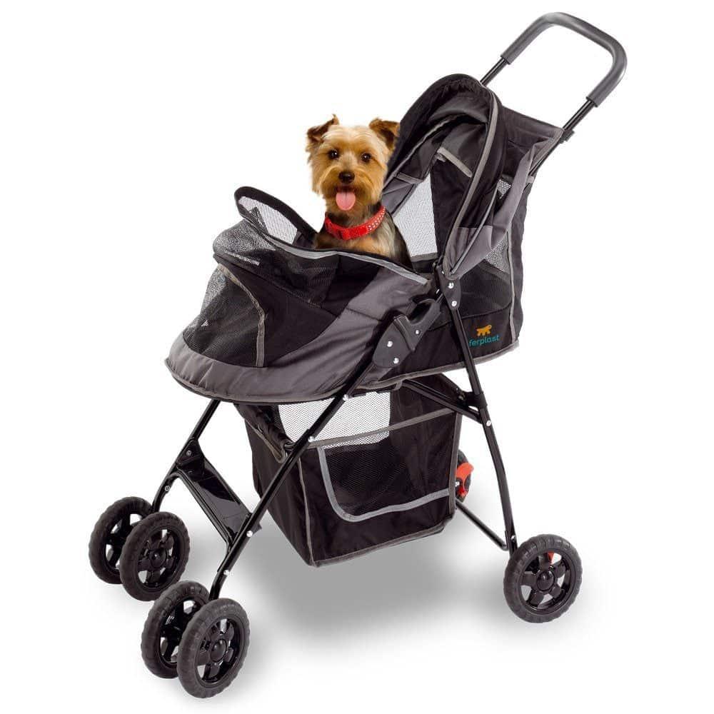 Black Dog Transport