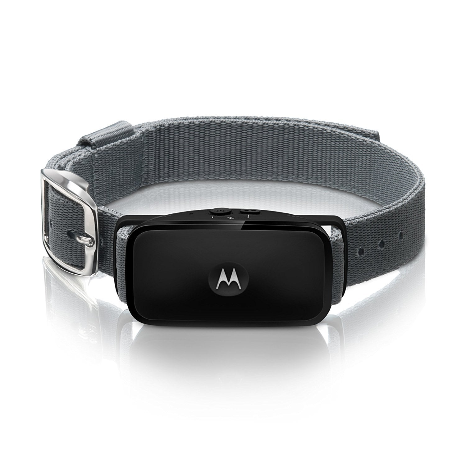 collier-anti-aboiement-ultrason-motorola