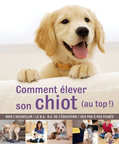 comment-elever-son-chiot-au-top