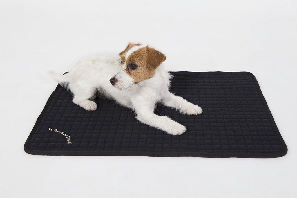 acheter un tapis pour chien solide et pas cher le guide complet. Black Bedroom Furniture Sets. Home Design Ideas